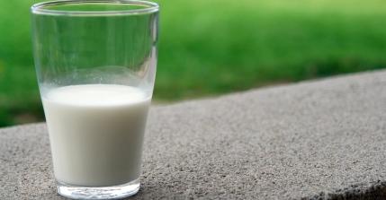 Diferencias entre la leche de vaca y la leche vegetal