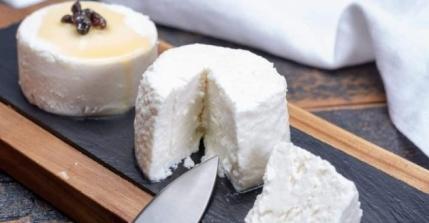 ¿Cuáles son los beneficios del queso de cabra para tu cuerpo?