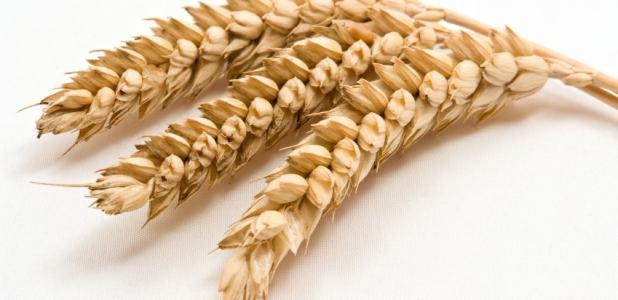 Cuidado con los productos empaquetados con gluten free